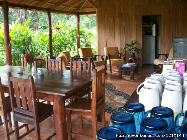 Common Dining And Lounging Area - Gentle Earth Juice fasting & health food retreats