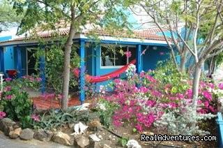 Casa Topana: