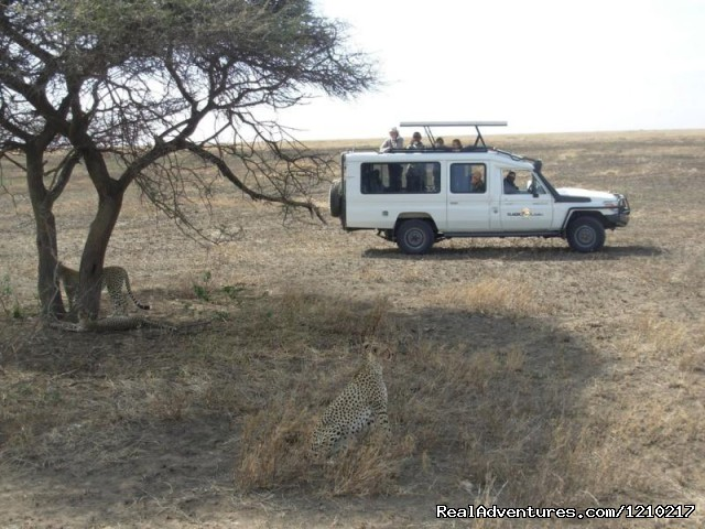 - Africa travel destinations, Tanzania unique safari
