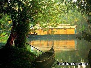 Kerala Dreams  God's Own Country Cochin, India Sight-Seeing Tours