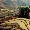 South of Yunnan to North Vietnam 11 days overland  Dali, China Sight-Seeing Tours
