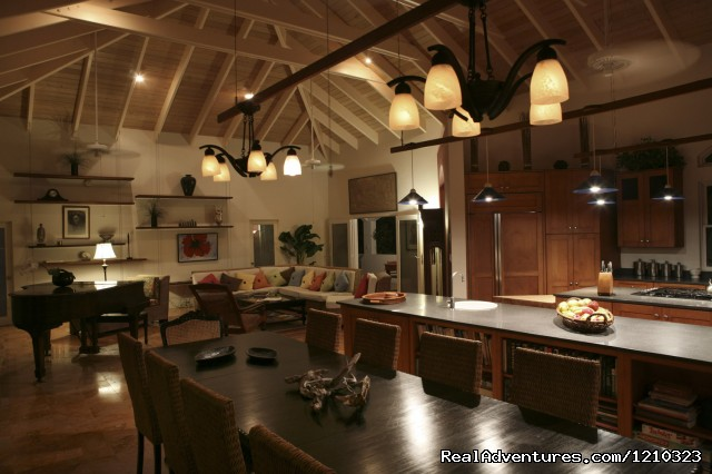 Great Room/Kitchen/Dining Room - Gorgeous, Ultra-Private Oceanside Villa