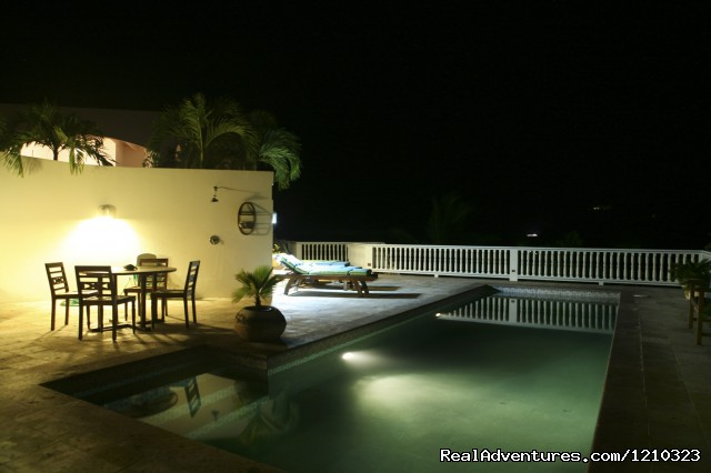 Private Pool at Night (#21 of 21) - Gorgeous, Ultra-Private Oceanside Villa
