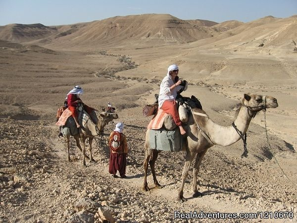 Israel Off the Beaten Track :Desert trips by 4x4 or camel | Image #4/16 | ISRAEL PRIVATE TOUR GUIDE Personal Tours of Israel
