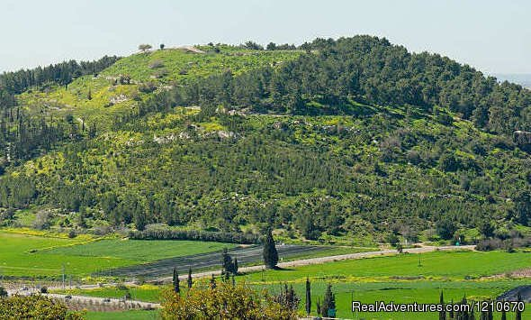 Judean Hills | Image #12/16 | ISRAEL PRIVATE TOUR GUIDE Personal Tours of Israel
