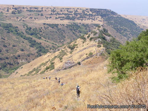 Galilee & Golan private tours - ISRAEL FAMILY ADVENTURES Israel Travel Company