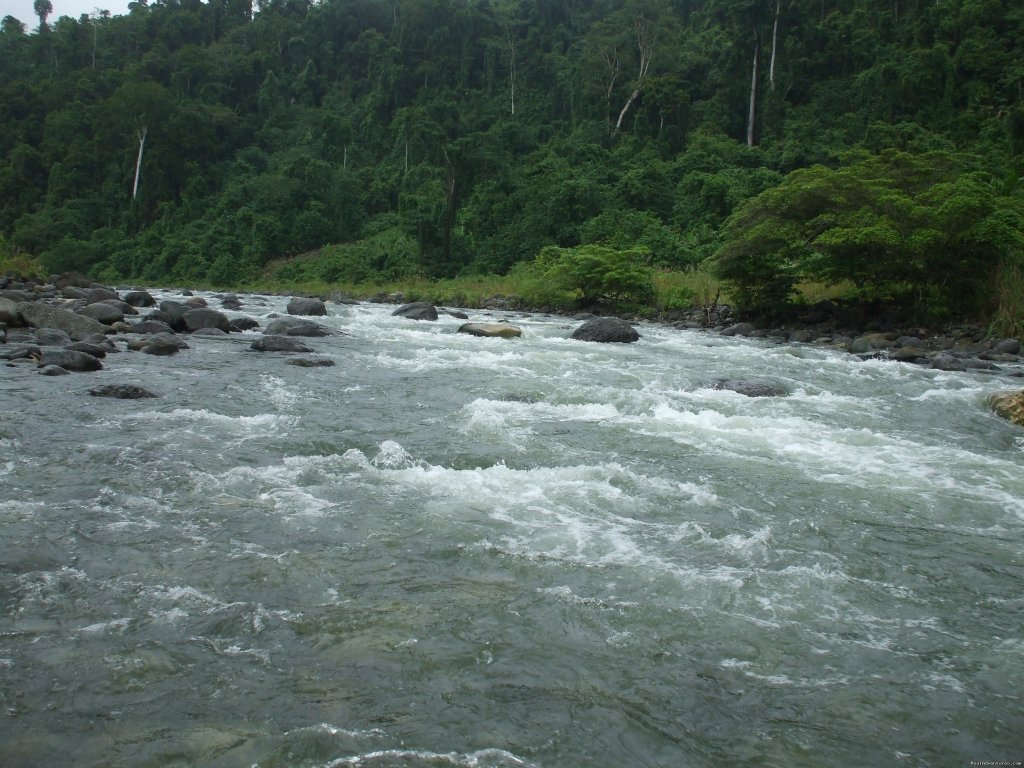 Tina river, Central Guadalcanal | Image #5/14 | Villagestay & Trekking in Solomon Islands.