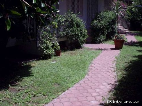 The garden - B&B Naples Italy Last Minute La Bouganville