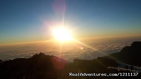 kilimanjaro., safari, Zanzibar, day trips.: