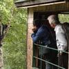 Bear Watching in Natural Habitat