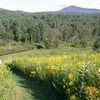 Wonderful Views at Marshfield Inn & Motel Marshfield, Vermont Bed & Breakfasts