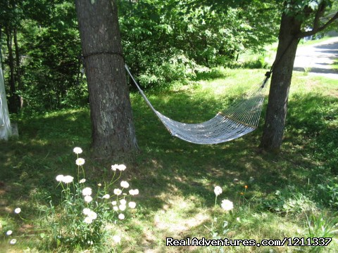 Relaxing hammock - Woods at Wihakowi Retreats, Cabins and Cottages