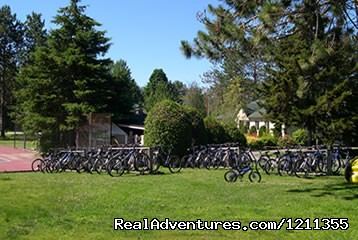 mountain bikes (#3 of 11) - Stowe Motel & Snowdrift