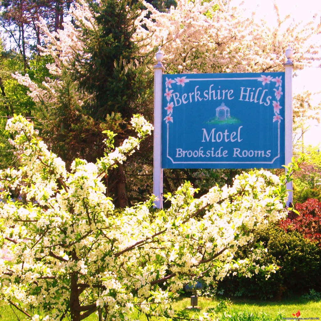 Spring Flowering Trees greet you | Image #4/8 | Many Adventurous Options at Berkshire Hills Motel