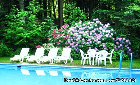 Our secluded pool | Image #6/8 | Many Adventurous Options at Berkshire Hills Motel