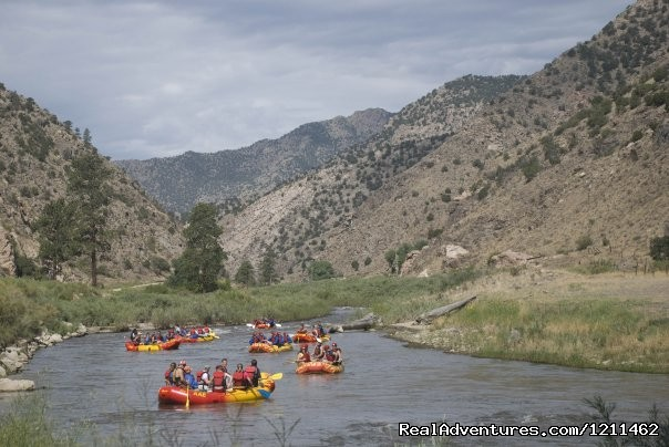 Big Horn Sheep Canyon - American Adventures Whitewater Rafting