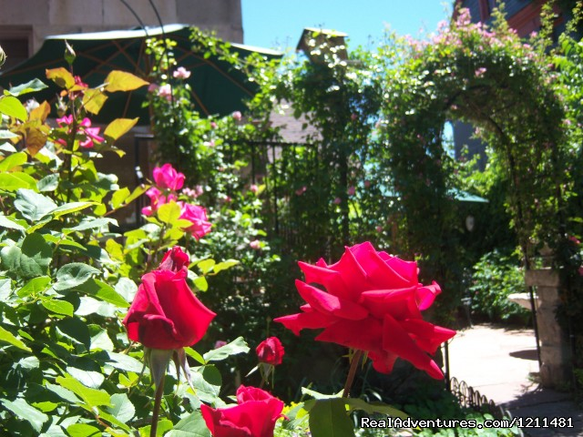 Roses - Historic Victorian Castle Marne Bed & Breakfast