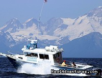 On-site charters for halibut in gorgeous Cook Inlet - Alaskan Angler RV Resort, Cabins & Charters