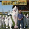 Alaskan Angler RV Resort, Cabins & Charters Campgrounds & RV Parks Far North, Alaska
