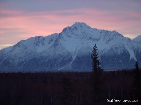 - Alaska's Harvest Bed & Breakfast