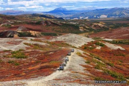 Image #7 of 14 - Denali ATV Adventures