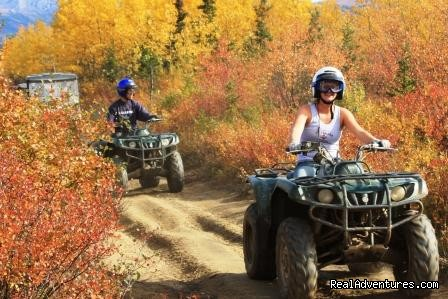 Image #3 of 14 - Denali ATV Adventures