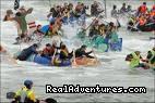 Portrush Raft Race - Avarest Town House
