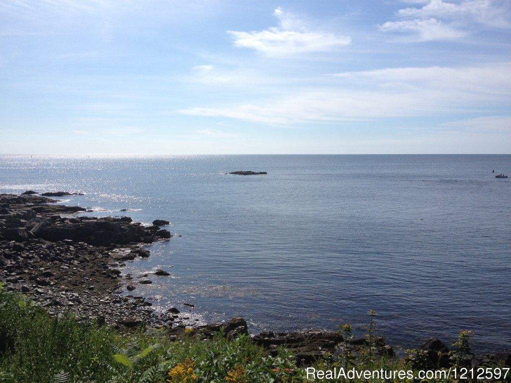 Cliff Walk | Image #13/21 | Sea Bass Cottage - Walking Distance to Ocean