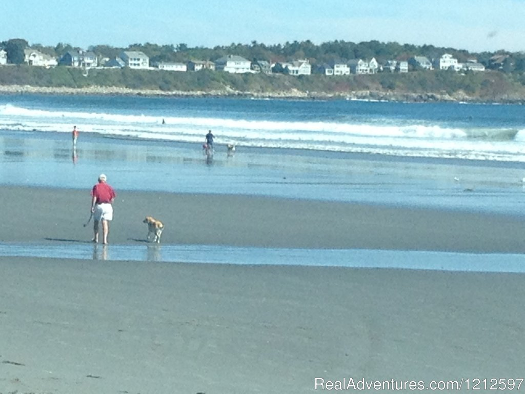 Nearby Sandy Beaches | Image #12/21 | Sea Bass Cottage - Walking Distance to Ocean