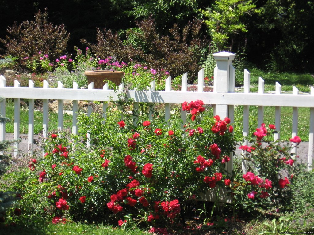 Rose Gardens | Image #21/21 | Sea Bass Cottage - Walking Distance to Ocean