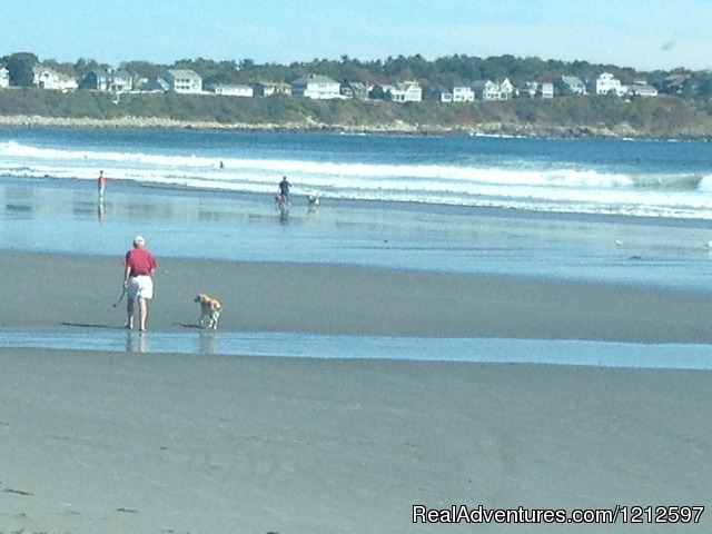 Nearby Sandy Beaches (#16 of 26) - Sea Bass Cottage - Walking Distance to Ocean