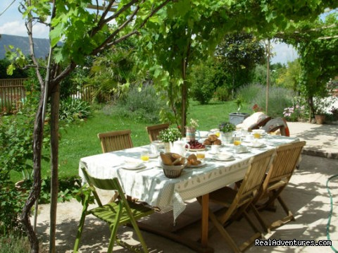 Breakfast outside under the Vines - GPS guided bike tour in spectacular Provence.