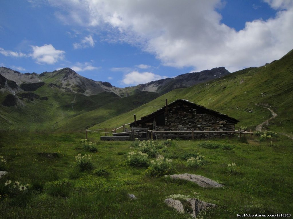 Alpine farm | Image #9/9 | Guided Treks In The Swiss Alps