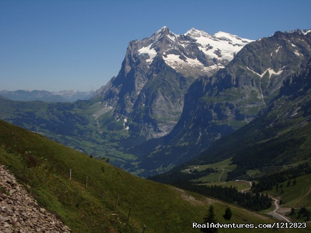 The Wetterhorn above Grindelwald - Guided Treks In The Swiss Alps