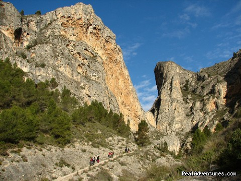 - Self Guided Walking Trails in Valencia