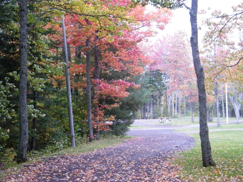 Enjoy the fall colours at our local park | Image #15/19 | Warm english hospitality at Coverdale B&B