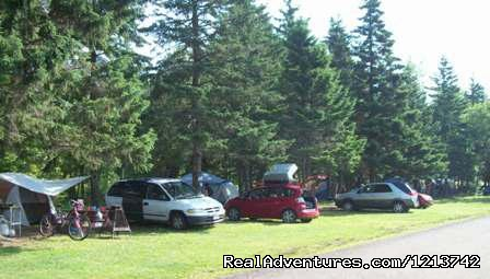 Tent sites. - Camper's City/ RV Resort/ Killam Prop. Inc.