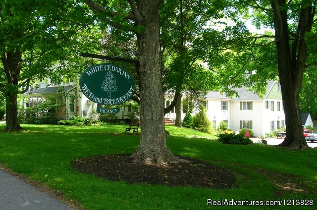 White Cedar Inn Summer - White Cedar Inn
