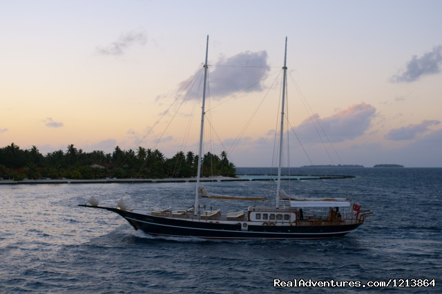 Special Dive Cruise in Maldives luxury CruiseYacht 'Dream Voyager - Queen of the Ocean'