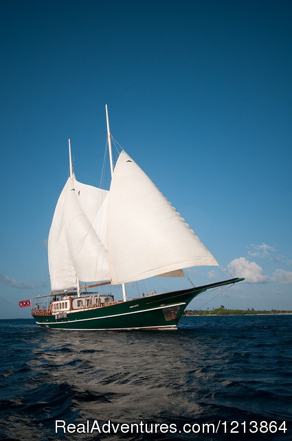 luxury CruiseYacht 'Dream Voyager - Queen of the Ocean' - Special Dive Cruise in Maldives