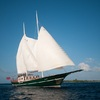 luxury CruiseYacht 'Dream Voyager - Queen of the Ocean'