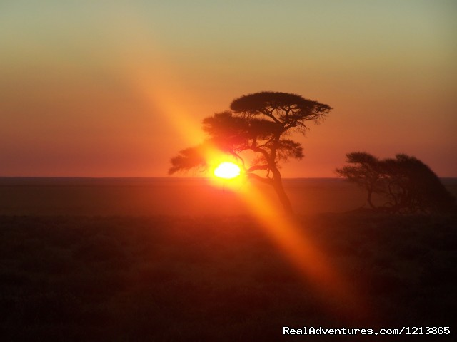 Sunset in Etosha National Park - Bluecrane Safaris Namibia