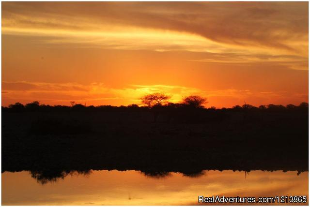 - Bluecrane Safaris Namibia