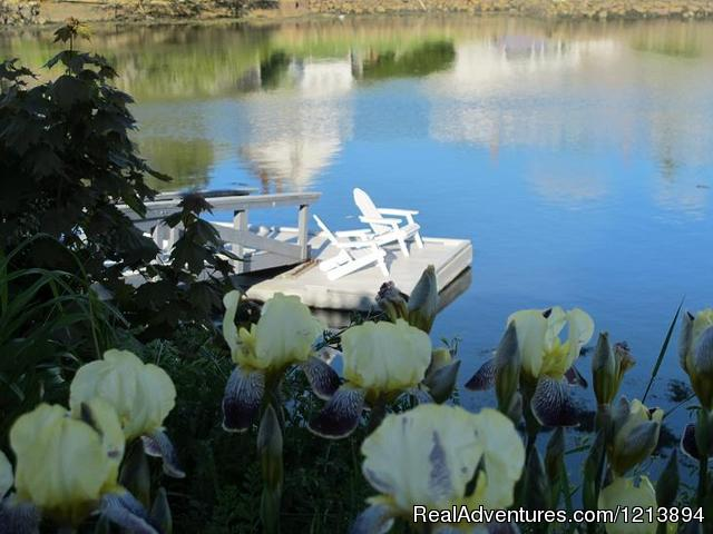 Enjoy our private dock, viewed in spring through the iris. - Boothbay HarborHarbour Towne Inn on the Waterfront