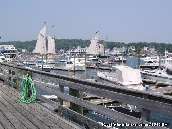 Tugboat Marina (#4 of 18) - Getaway to the Coast at the Tugboat Inn