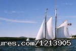 Viewing Schooners From Cedarholm Garden Bay Inn - Camden ME Oceanfront B&B Romantic Hideaway Inn