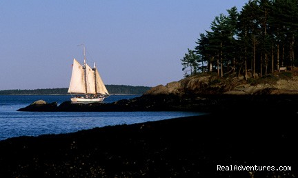Sailing in Camden Maine harbor