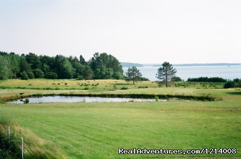 Pond with Bay in background - Serene with breathtaking views at Capt'n N Eve's
