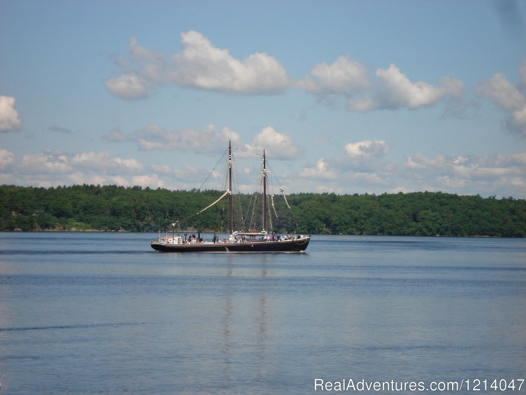 Tall Ship Sailing Past White Rocks | Image #20/26 | Maine Coast Vacations Scenic White Rocks Cottage