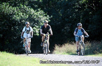 Biking at White Rocks | Image #21/26 | Maine Coast Vacations Scenic White Rocks Cottage